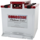 CONCORDE RG-41 PIPER MERIDIAN 601-910 BATTERY